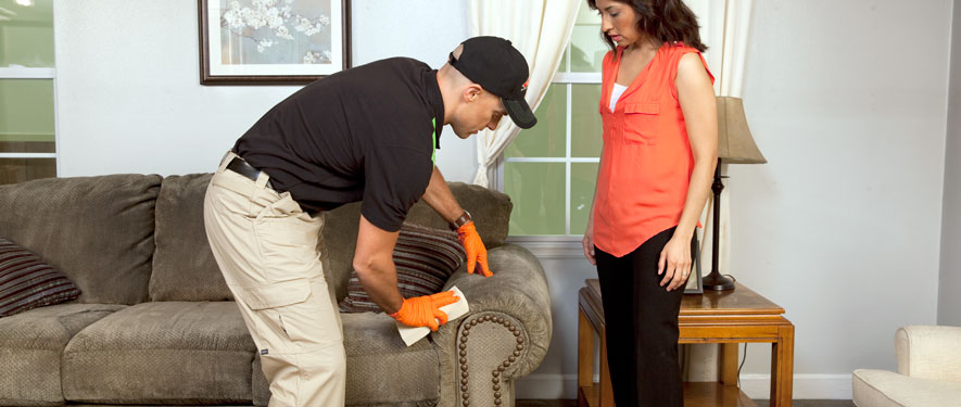 Grants Pass, OR carpet upholstery cleaning