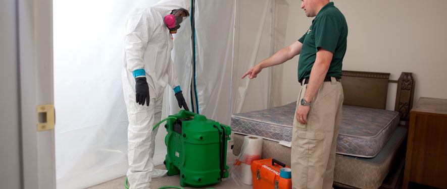 Grants Pass, OR mold removal process